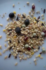 mixed-grain-on-plate
