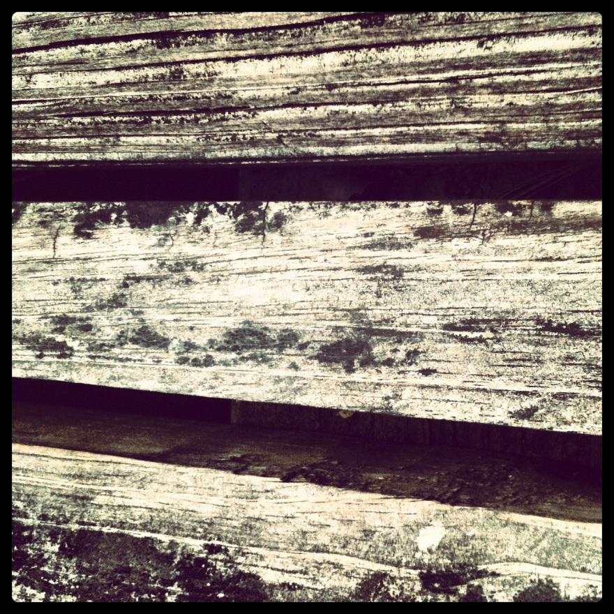 naturewalks-062